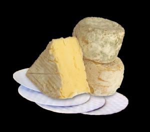 CheesePads